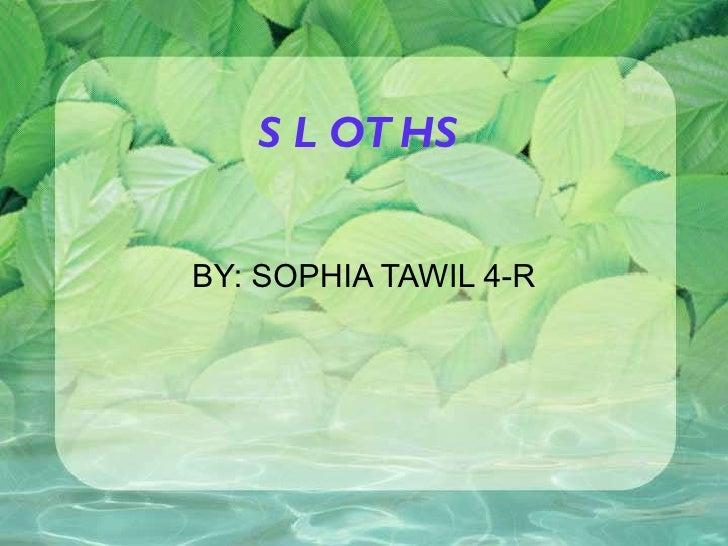 SLOTHS BY: SOPHIA TAWIL 4-R