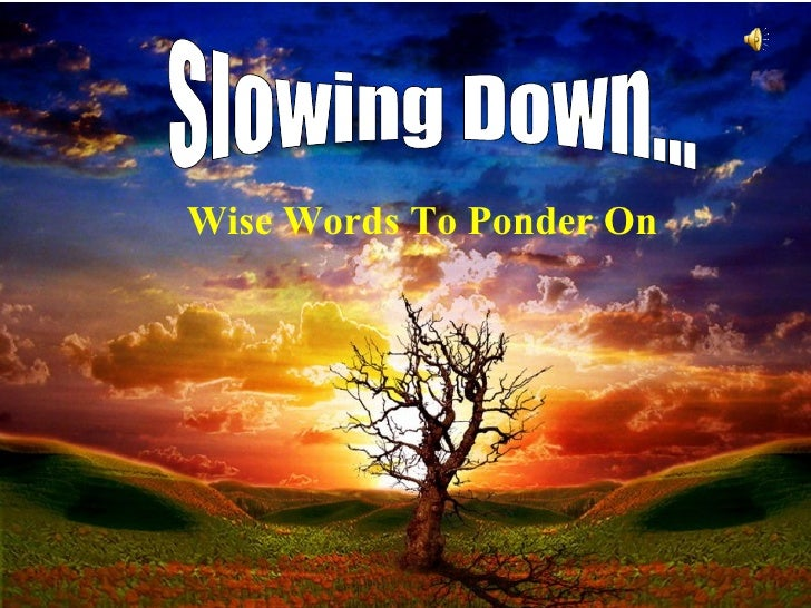 Slowing Down... Wise Words To Ponder On