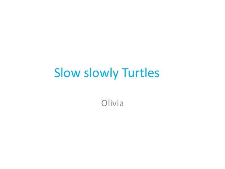 SlowslowlyTurtles<br />Olivia<br />