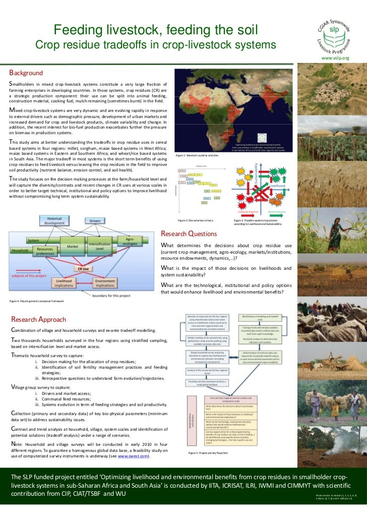 Feeding livestock, feeding the soil: Crop residue tradeoffs in crop-livestock systems