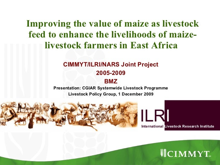 Improving the value of maize as livestock feed to enhance the livelihoods of maize-livestock farmers in East Africa  CIMMY...