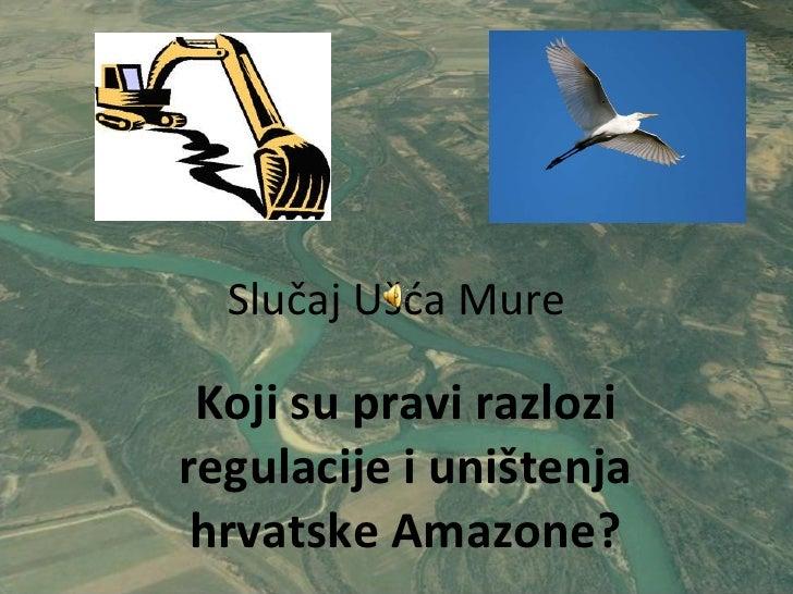 Slučaj Ušća Mure Koji su pravi razlozi regulacije i uništenja hrvatske Amazone?