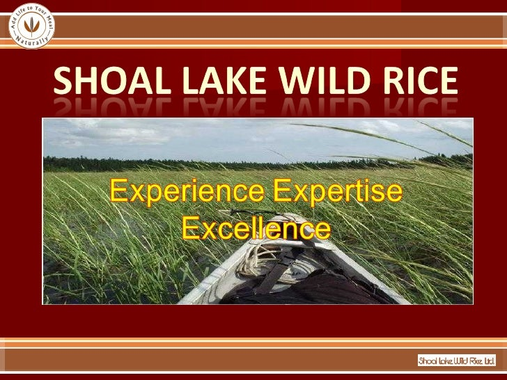 Introduction of Shoal Lake Wild Rice