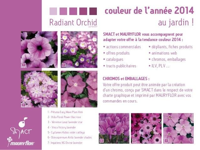 Pantone radiant orchid couleur de l 39 ann e 2014 for Au jardin des couleurs