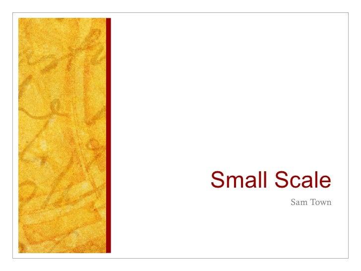 Small Scale <ul><li>Sam Town </li></ul>