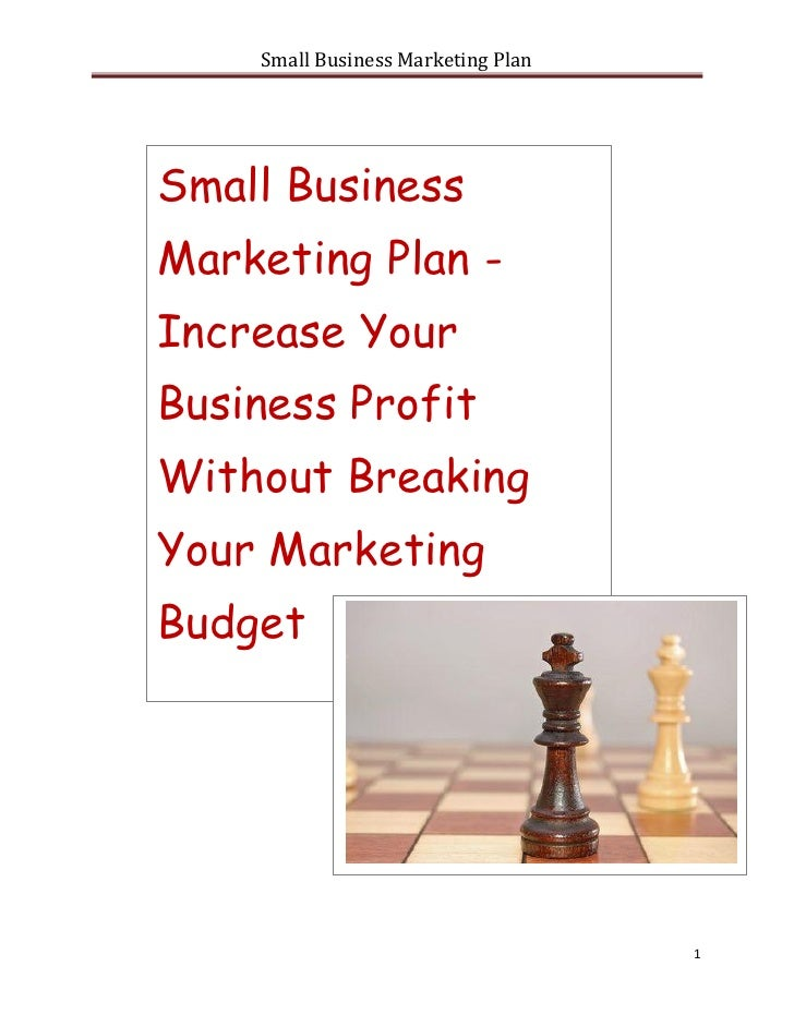 Small Business Marketing PlanSmall BusinessMarketing Plan -Increase YourBusiness ProfitWithout BreakingYour MarketingBudge...