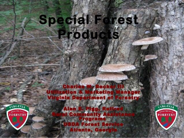 Charles W. Becker III Utilization & Marketing Manager Virginia Department of Forestry Alan E. Pigg, Retired Rural Communit...