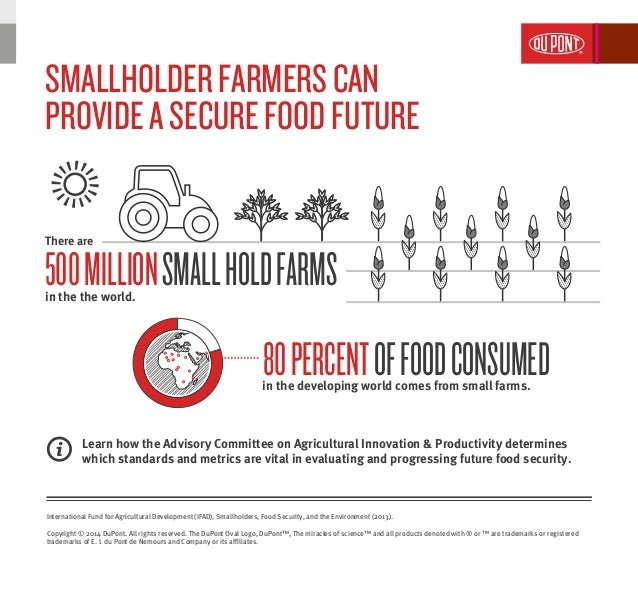 Smallholder farmers provide a secure food future