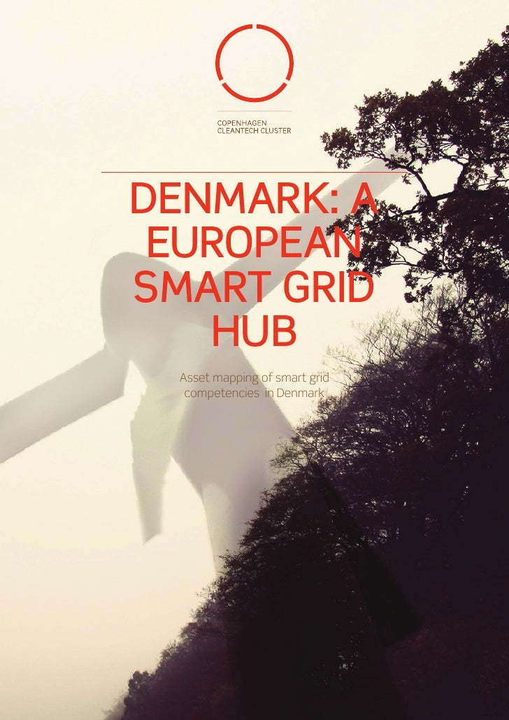 DENMARK: A EUROPEANSMART GRID   HUB Asset mapping of smart grid  competencies in Denmark