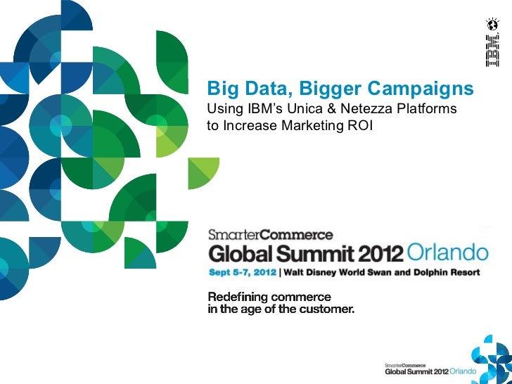 Big Data, Bigger CampaignsUsing IBM's Unica & Netezza Platformsto Increase Marketing ROI