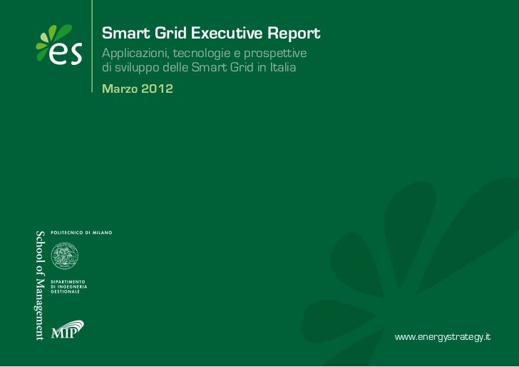 Smart grid executive_report