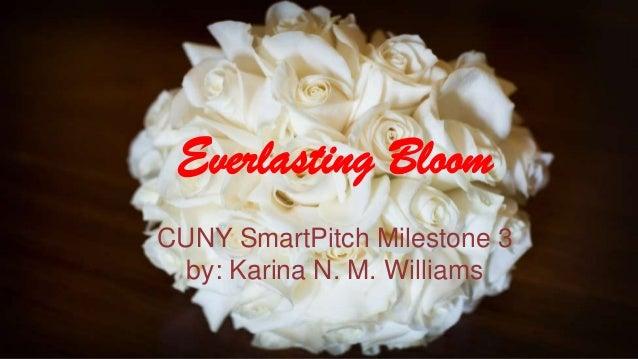 Smart pitch: Milestone 3