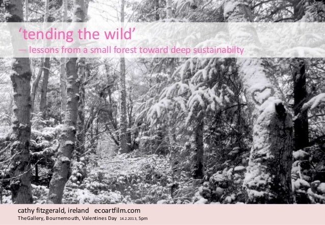 'tending the wild'— lessons from a small forest toward deep sustainabilty                           Thank you             ...