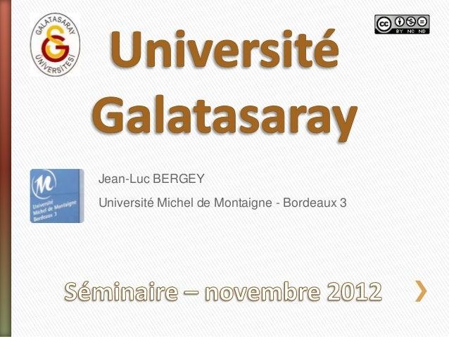 Jean-Luc BERGEY Université Michel de Montaigne - Bordeaux 3