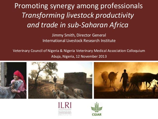 Promoting synergy among professionals: Transforming livestock productivity and trade in sub-Saharan Africa