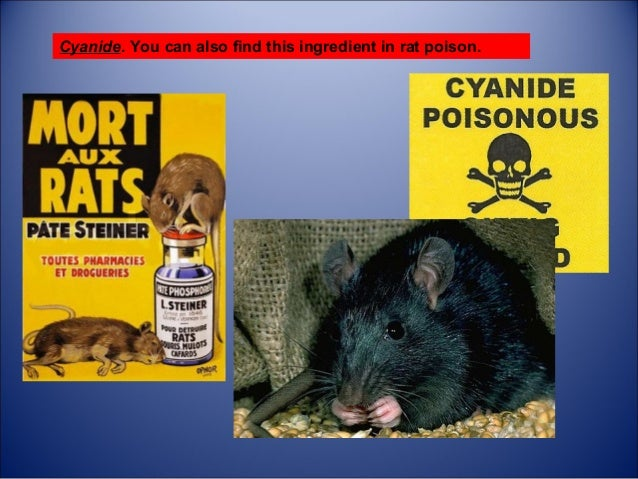 Does rat poison contain cyanide? - Quora