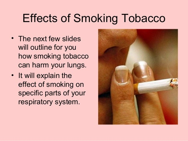 essay smoking effects Secondhand smoke is perhaps the worst effects of smoking it is the one effect that goes beyond simply harming the smoker and harming perfect for my essay.