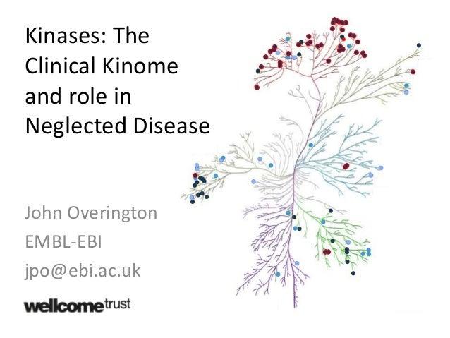 John Overington EMBL-EBI jpo@ebi.ac.uk Kinases: The Clinical Kinome and role in Neglected Disease