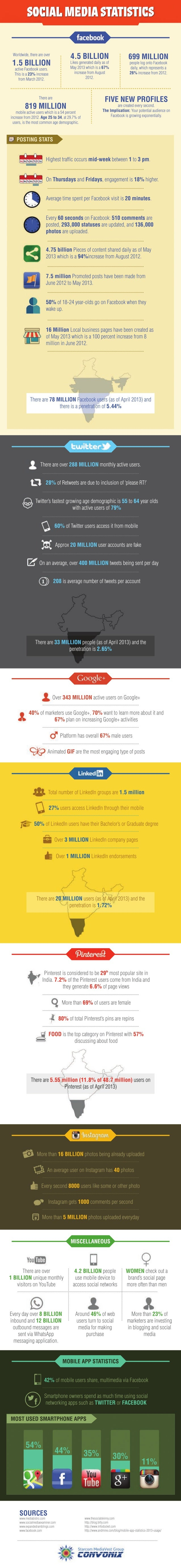 Social Networking Statistics & Facts - 2013