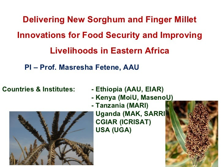 Delivering New Sorghum and Finger Millet Innovations for Food Security and Improving Livelihoods in Eastern Africa PI – Pr...