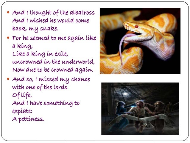 snake by dh lawrence analysis