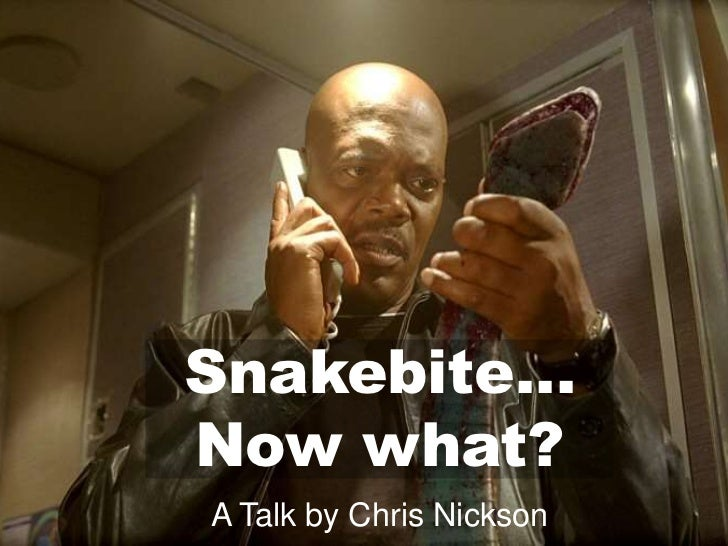 Snakebite…Now what?A Talk by Chris Nickson