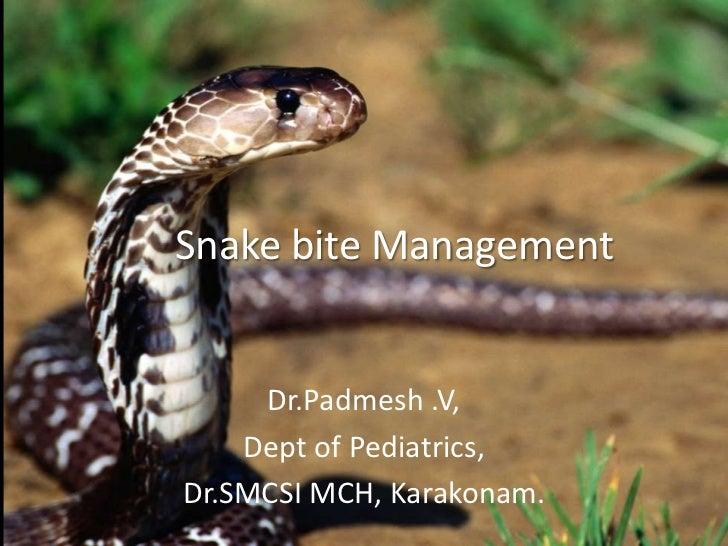 Dr.Padmesh. VSnake bite Management     Dr.Padmesh .V,    Dept of Pediatrics,Dr.SMCSI MCH, Karakonam.