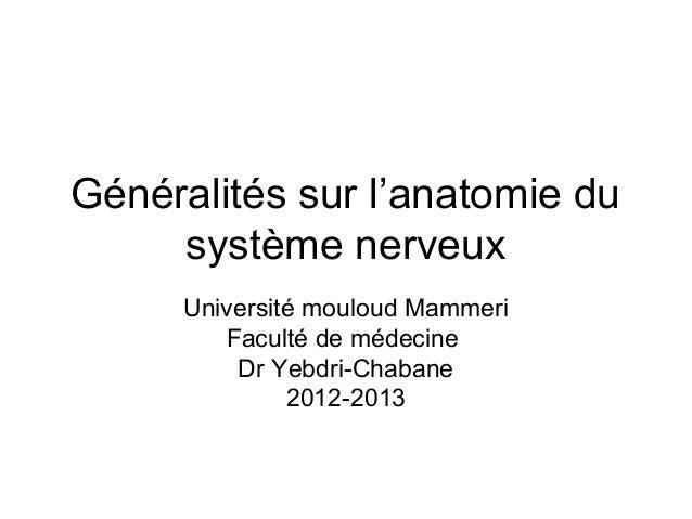 Généralités sur l'anatomie du     système nerveux     Université mouloud Mammeri        Faculté de médecine         Dr Yeb...