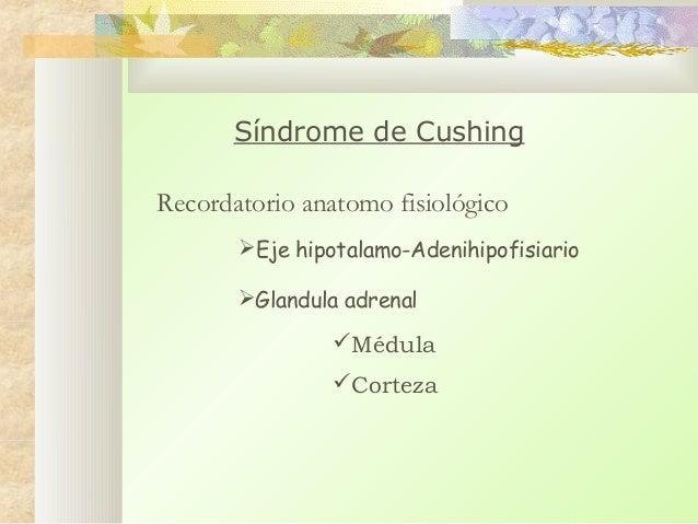 Síndrome de Cushing Recordatorio anatomo fisiológico Eje hipotalamo-Adenihipofisiario Glandula adrenal  Médula Corteza