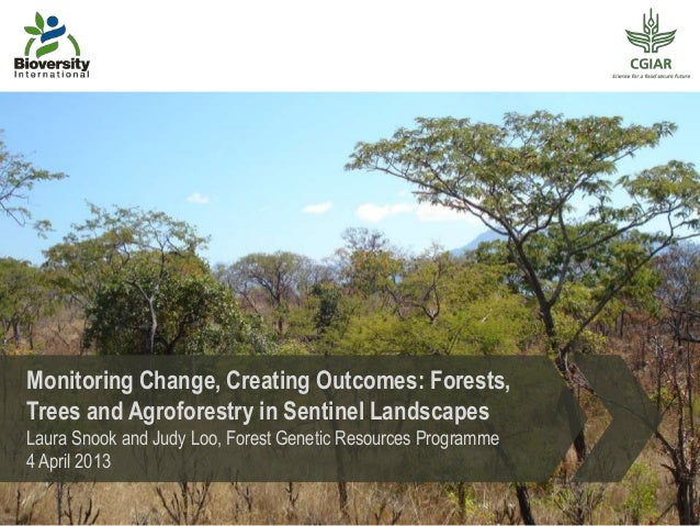 Monitoring change, creating outcomes: forests, trees and agroforestry in sentinel landscapes