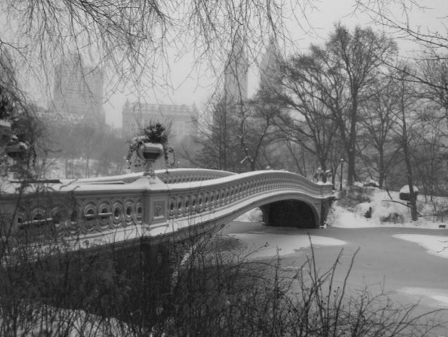Central Park, New York City, Friday Jan. 3, 2014 Photographer Gordon Donovan