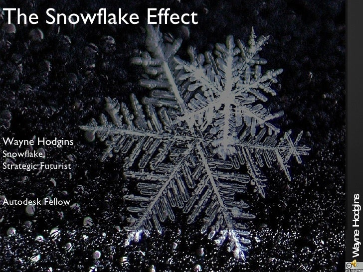 The Snowflake Effect Wayne Hodgins Snowflake, Strategic Futurist Autodesk Fellow