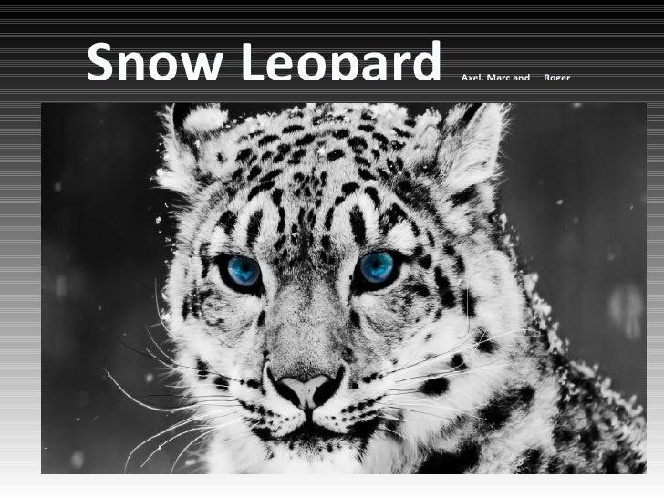 Snow Leopard                                           Axel, Marc and   RogerHaga clic para modificar el estilo de subtítu...