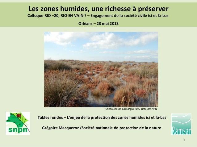 La SNPN et les zones humides - Ramsar