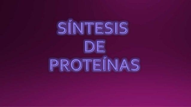 Las proteínas están formados por la unión de miles de otras moléculas más pequeñas llamadas aminoácidos. Sólo existen 20 t...