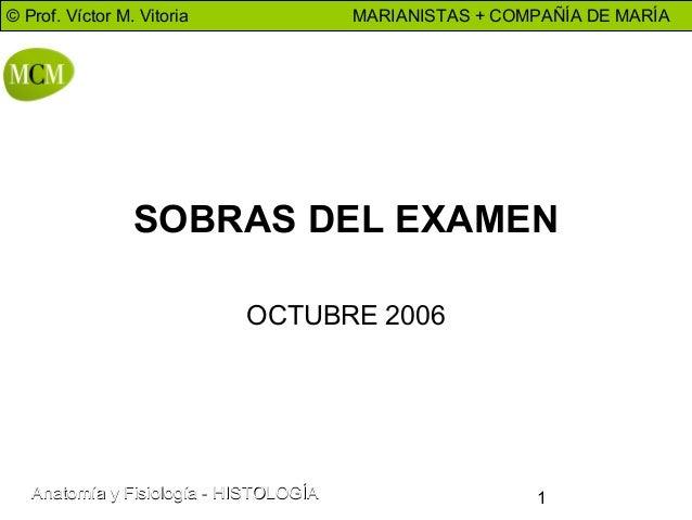 © Prof. Víctor M. Vitoria  MARIANISTAS + COMPAÑÍA DE MARÍA  SOBRAS DEL EXAMEN OCTUBRE 2006  Anatomía y Fisiología - HISTOL...