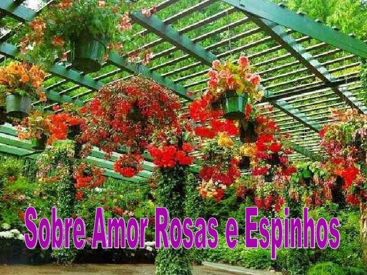 Sobre Amor Rosas e Espinhos