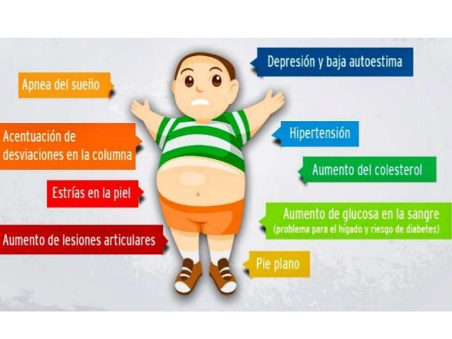 Tipo aceite recetas de dietas para bajar de peso gratis