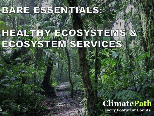 ClimatePathClimatePath ClimatePath Every Footprint Counts