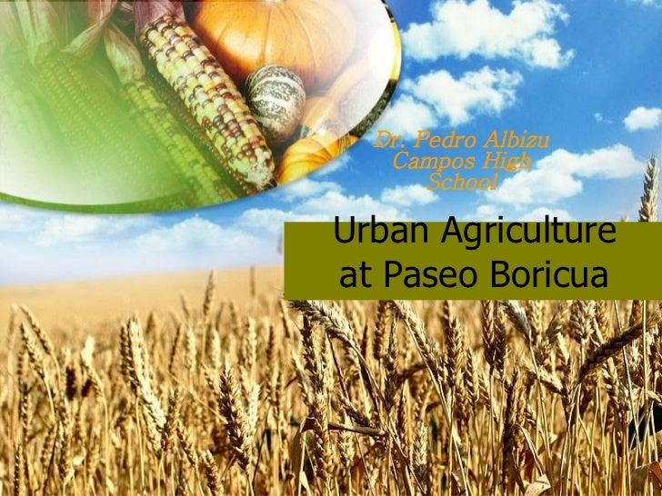 Urban Agriculture at Paseo Boricua Dr. Pedro Albizu Campos High School