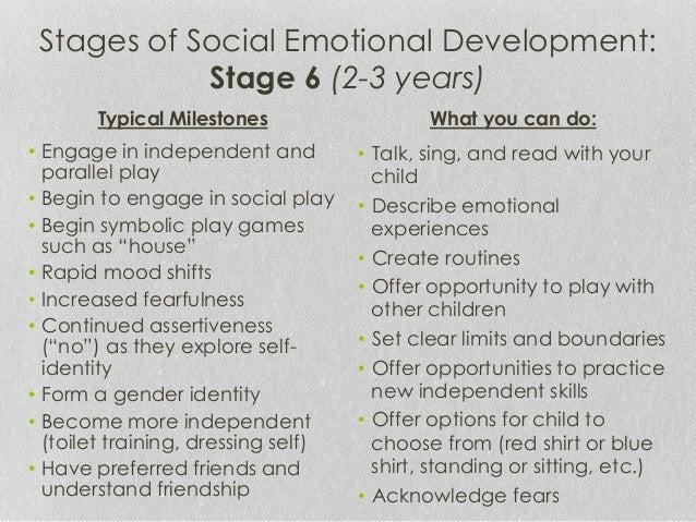 social emotional development essay