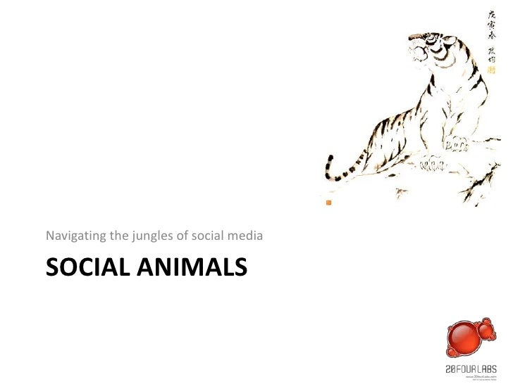 Social animals<br />Navigating the jungles of social media<br />