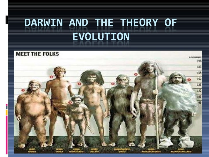 (Social) Darwin and the Theory of Evolution