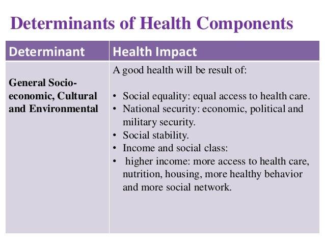 who social determinants of health pdf