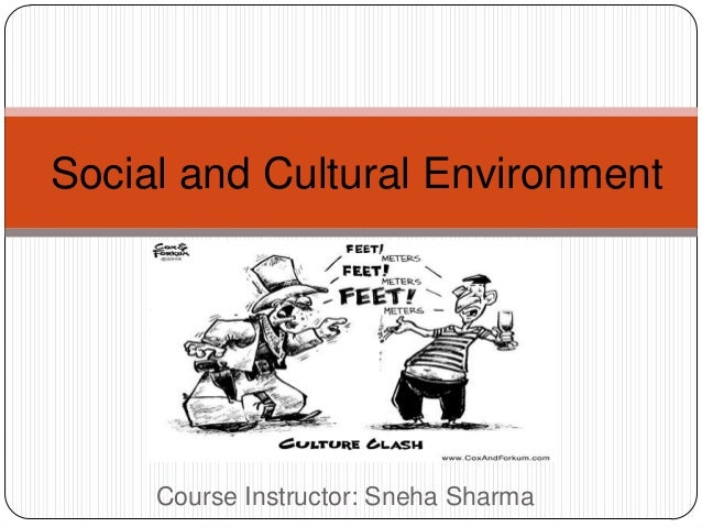 Social and Cultural Environment Course Instructor: Sneha Sharma