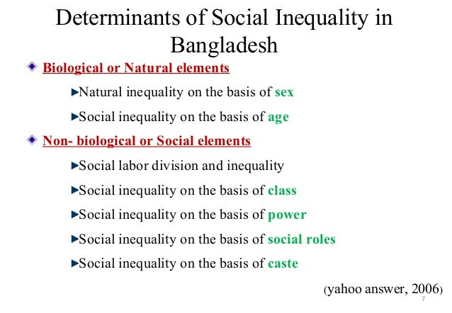 Essay On Social Inequality