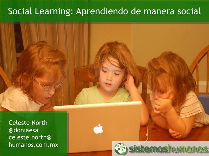 Social learning: Aprendiendo de manera social