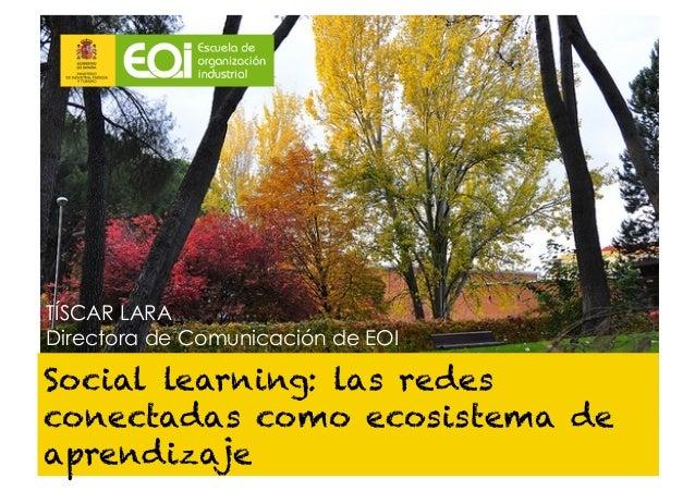 TÍSCAR LARADirectora de Comunicación de EOISocial learning: las redesconectadas como ecosistema deaprendizaje