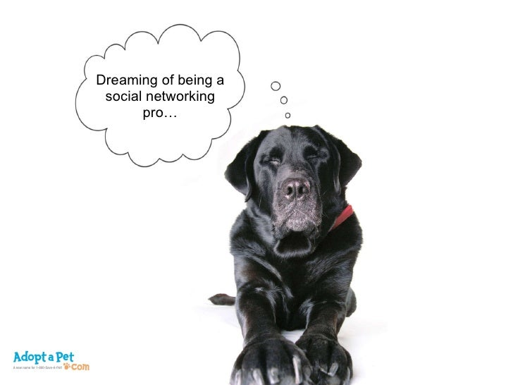 Dreaming of being a social networking pro…