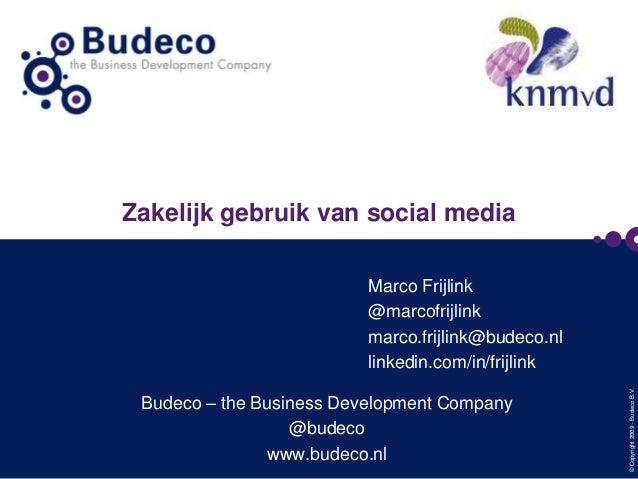 Zakelijk gebruik van social media  Budeco – the Business Development Company @budeco www.budeco.nl  © Copyright 2009 - Bud...